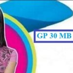 GP 30MB 12TK Offer