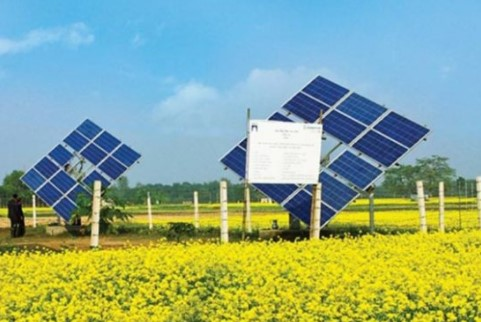 Bangladesh All Solar Company List & Contact Number